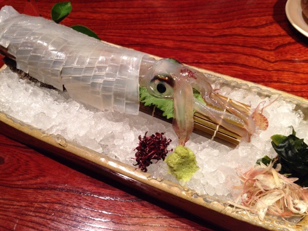suigunnosato-squid