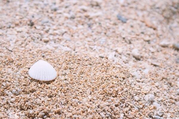 早起き_砂浜