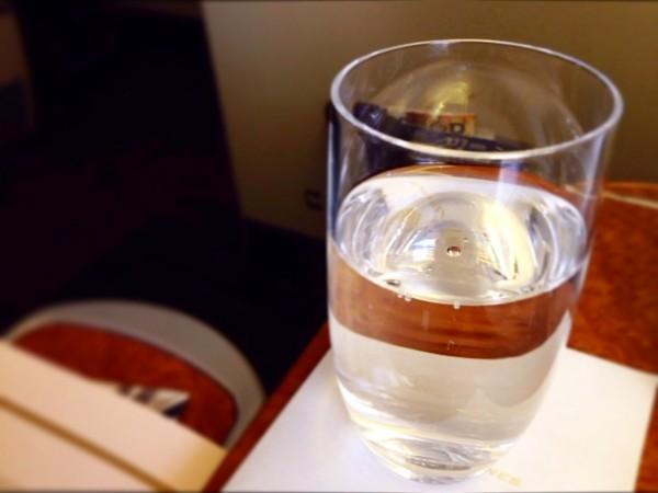 in-flight-meal04